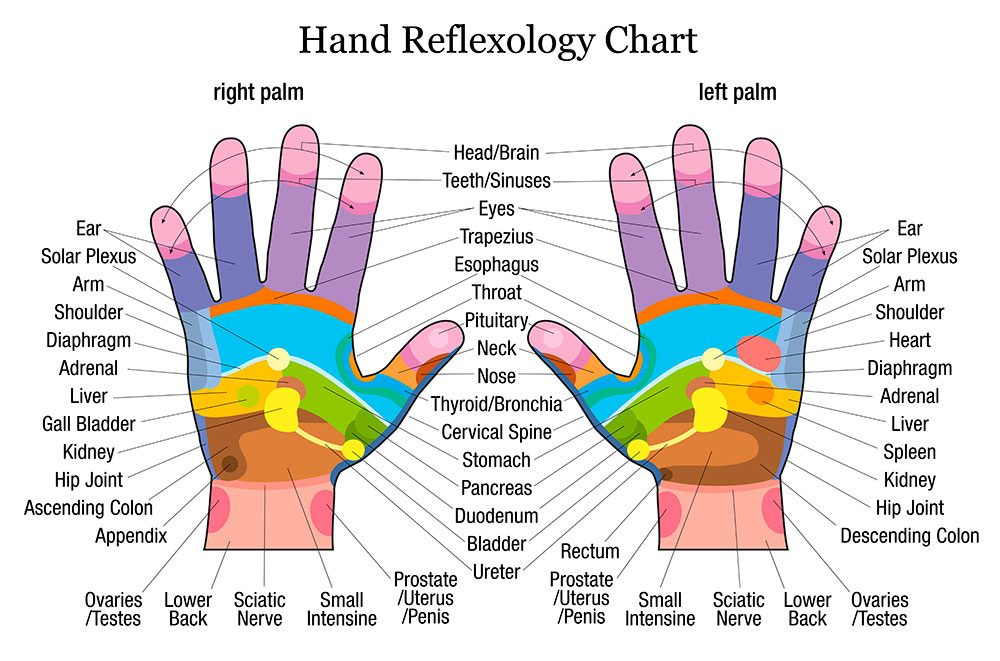 hand reflexology online course - Holistic Therapies Training